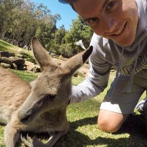 Selfie-Kangaroo-Mike